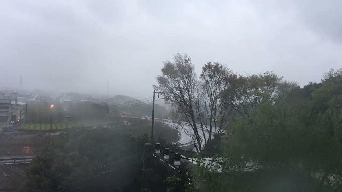 暴風雨 X 暴風雨です   HOTワー...