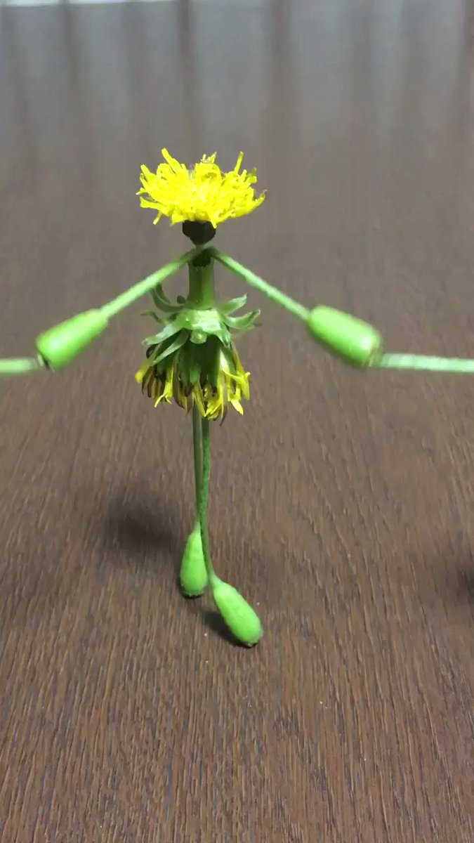 Origami Made Of Flowers Is Just As Cute And Pretty As You'd Expect