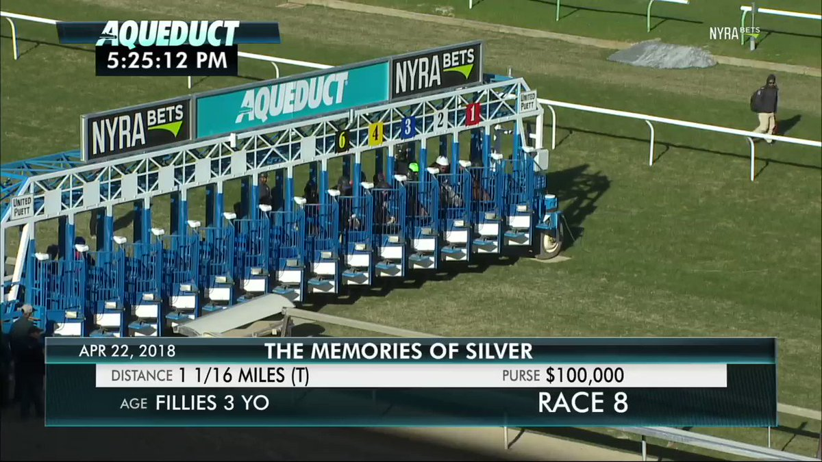 FULL REPLAY (Significant Form & @iradortiz - Memories of Silver) - The last stake of the #Aqueduct season is a must watch ⬇️