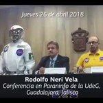 Rodolfo Neri Vela
