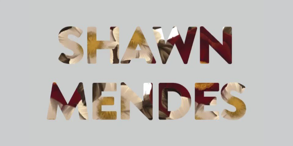 #ShawMendesTheAlbum out now! https://t.co/VVprIExL1g https://t.co/4o0N5rpUZQ