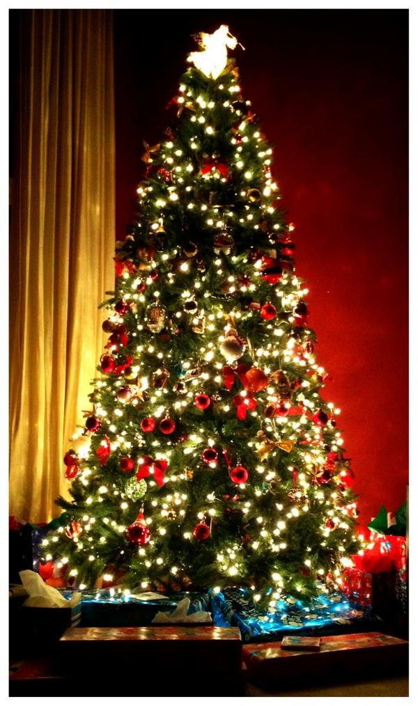 ryan sickler on twitter gotta give props to my brother sister in law best lookin tree every year merry xmas yall