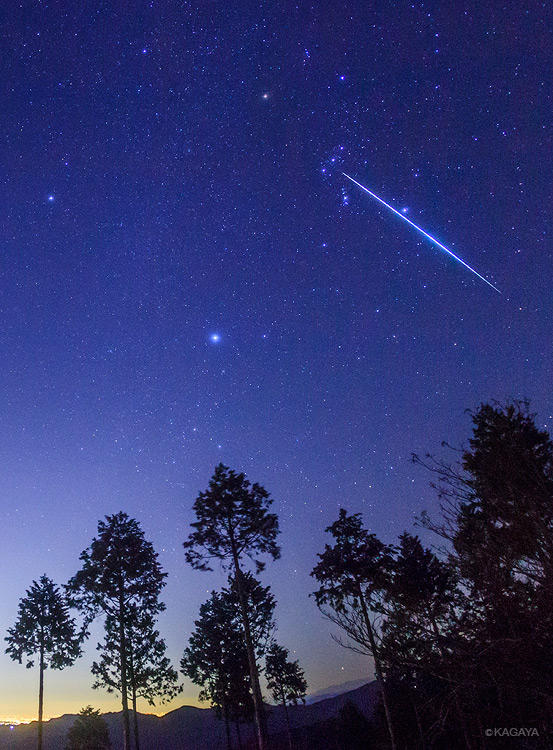 Kagaya On Twitter Quot 今撮影したオリオンを貫くふたご座流星群の大きな流れ星です。 Http T