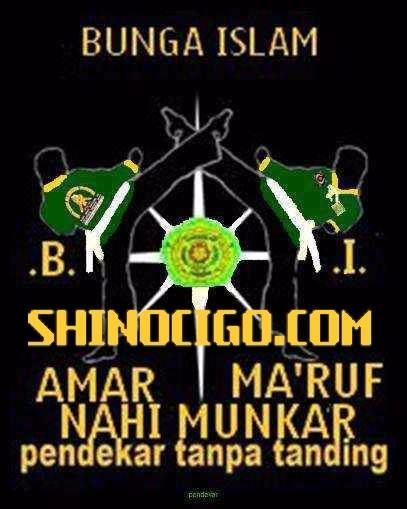 Download Gambar Pencak Silat Bunga Islam