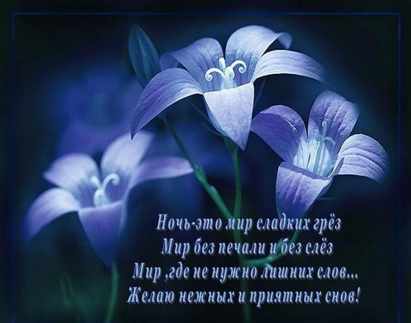 Открытки доброй ночи любимая в стихах красивые