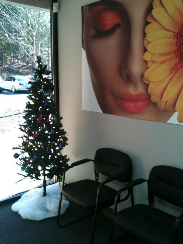 RT @FollowDalmation: Our office at http://SpeedproAlpharetta.com! @WSJNY #WSJdecor #Christmas http://pic.twitter.com/Na6dD0aV