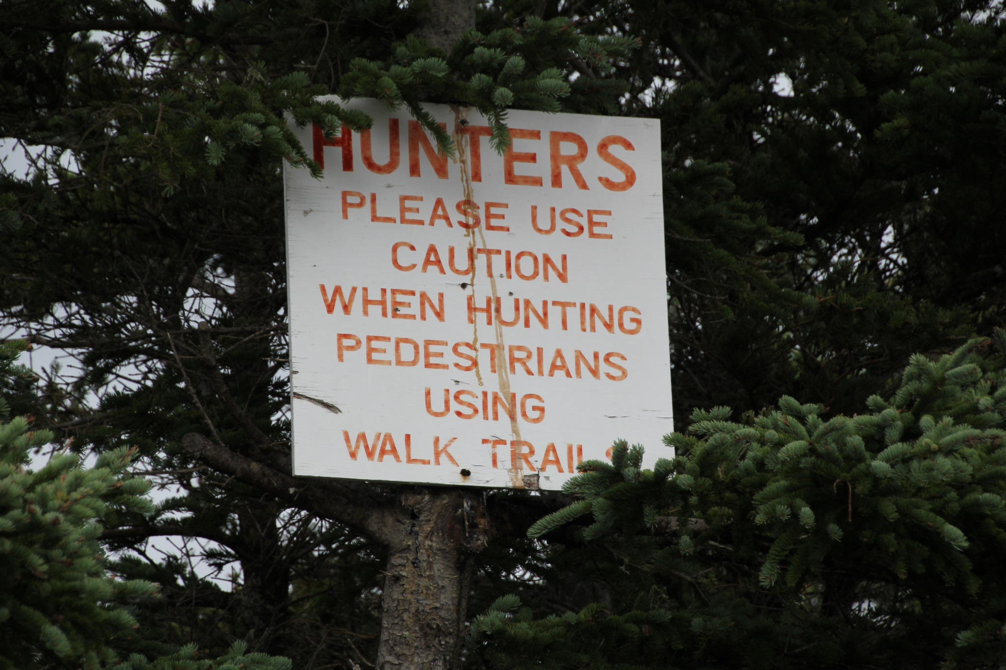 Hunters please use caution when hunting pedestrians