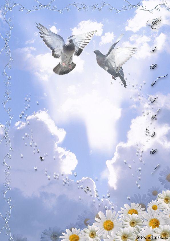 Открытка, а открытки с голубями все летят ко мне из детства