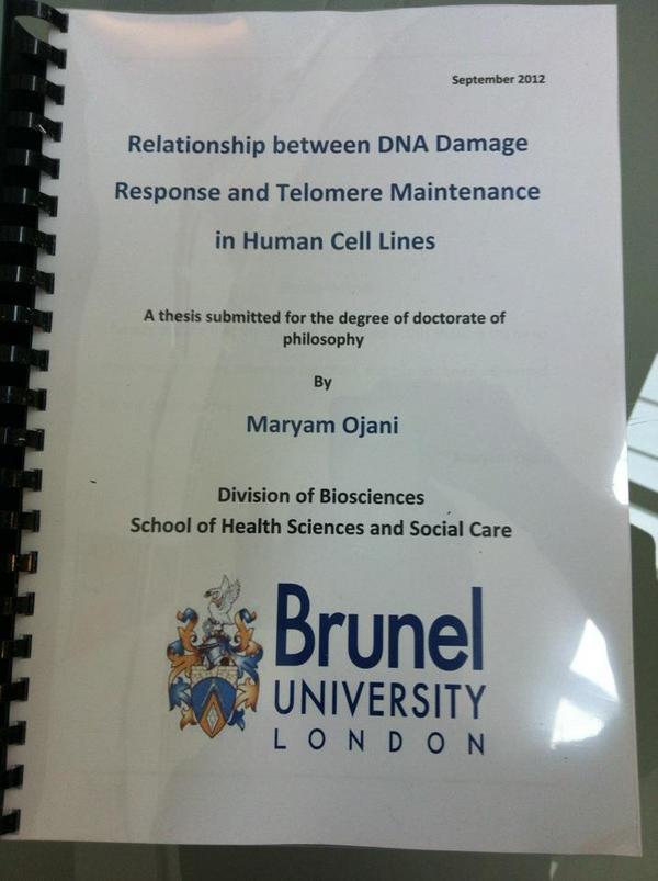 maryam ojani thesis