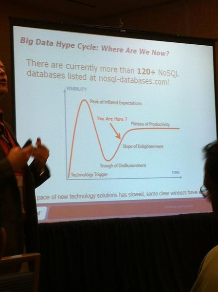 big data hype slide