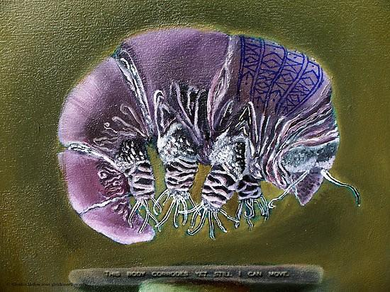 Tardigrade dried out, dreaming purple. #FiveWordStories http://pic.twitter.com/TaZhhvtB