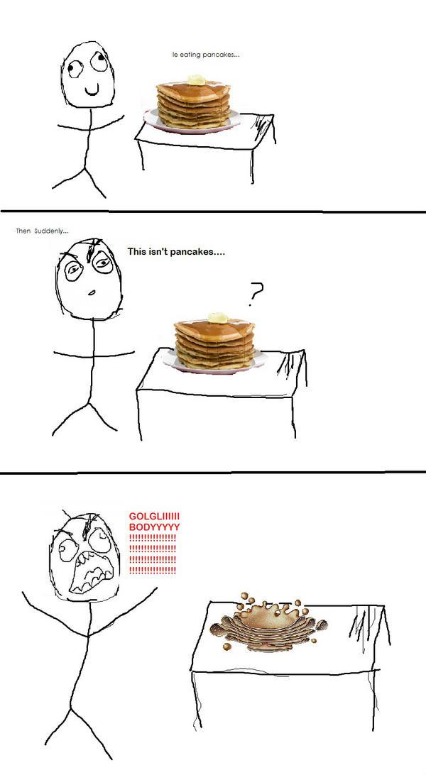 Pancakes? Nah just the golgi body #votegolgibody #organellewars http://pic.twitter.com/td3hBGIj