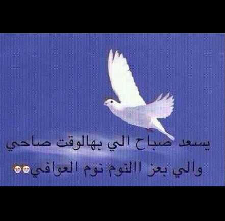 واحد من النــاس Twitterissa يسعد صباح اللي بهالوقت صاحي واللي بعز النوم نوم العوافي Http T Co Uvxe9vcy