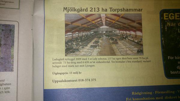 mjölkgård till salu
