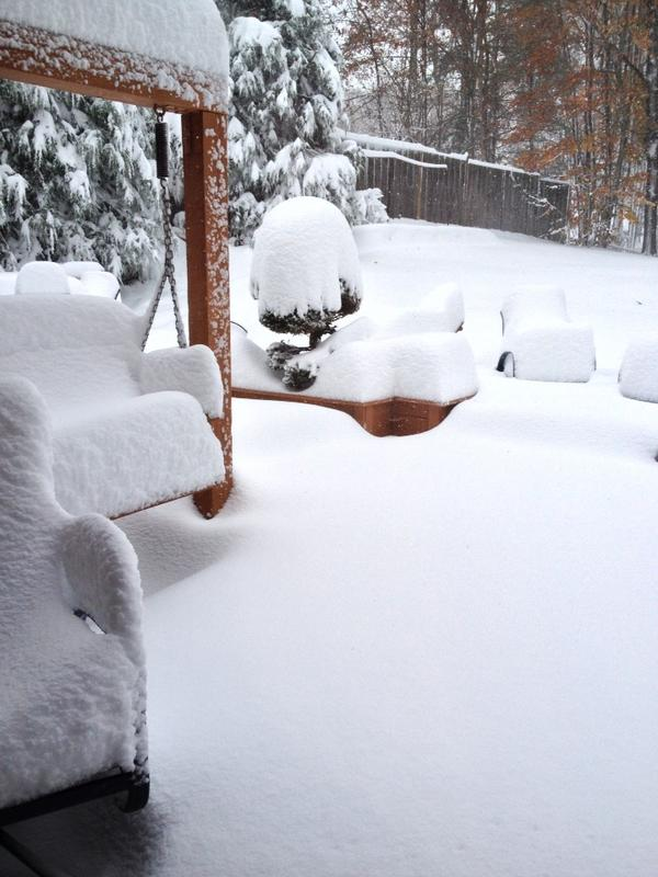 "West Virginia snow.. awesome pic! ""@kocarrico: Back yard in Raleigh County on Tuesday, Oct. 30, 2012 http://pic.twitter.com/A7AeCwLa"""