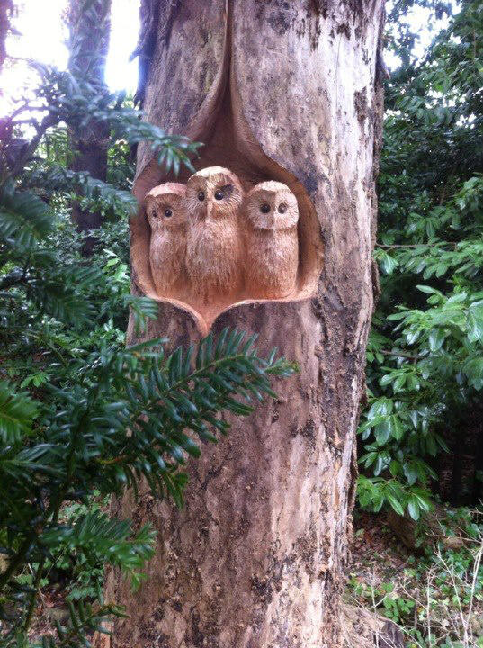 Tommy craggs on twitter quot chainsaw carved baby owls http