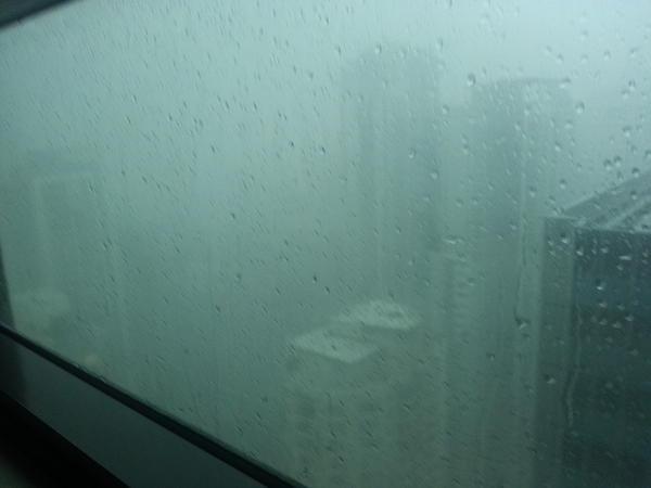 #brisbanestorm #stormshaz http://pic.twitter.com/b8aHdGgW