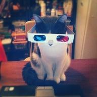 Do you like #3D? How about #cats? You'll like this photo ;) http://t.co/ZdIHZQ5P