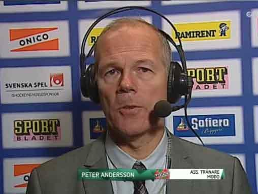 peter andersson domare