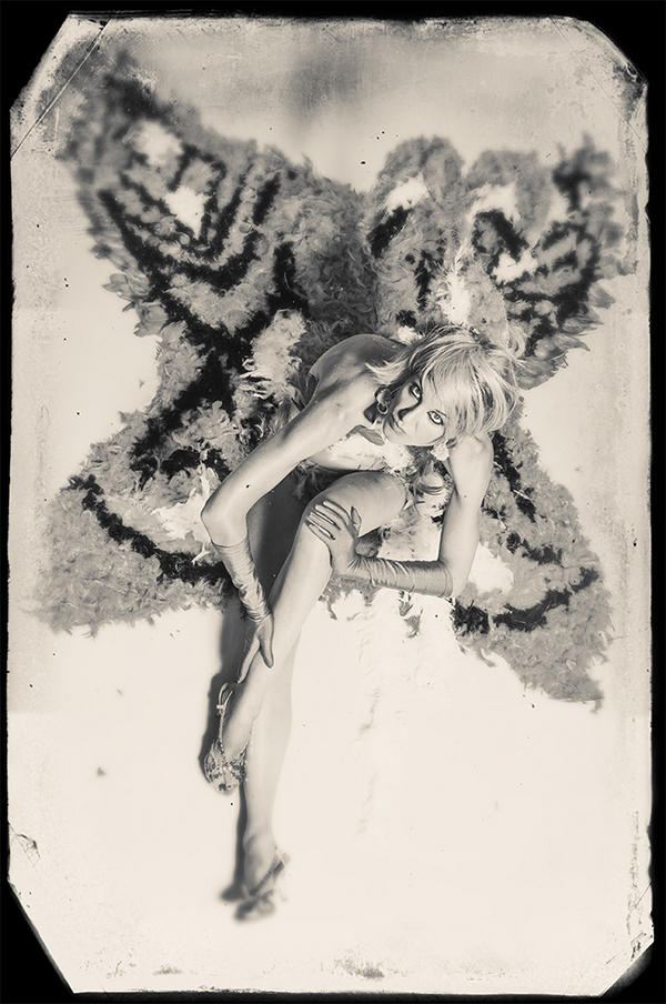 Thumbnail for The rise and Fall of Fathom Butterfly, Part 3
