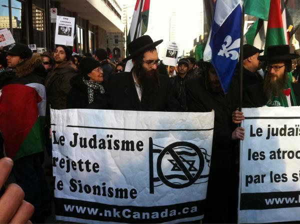 2012-11-18 13h35 [photo @frogsarelovely] Picture from Montreal, Québec at the demonstration #GazaUnderAttack