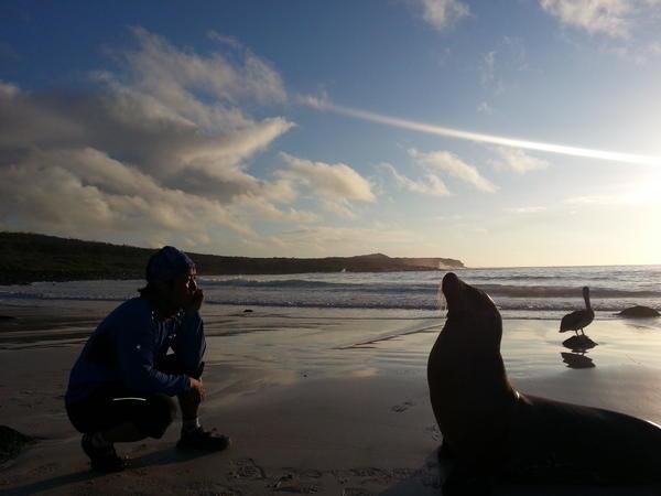 갈라파고스 바다사자도 나에게 멋진추억을 선물해줬다^^ http://t.co/1KmTa2Xt