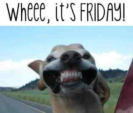 """Carl 🇬🇧 on Twitter: """"....and this is my Friday Face! # ..."""