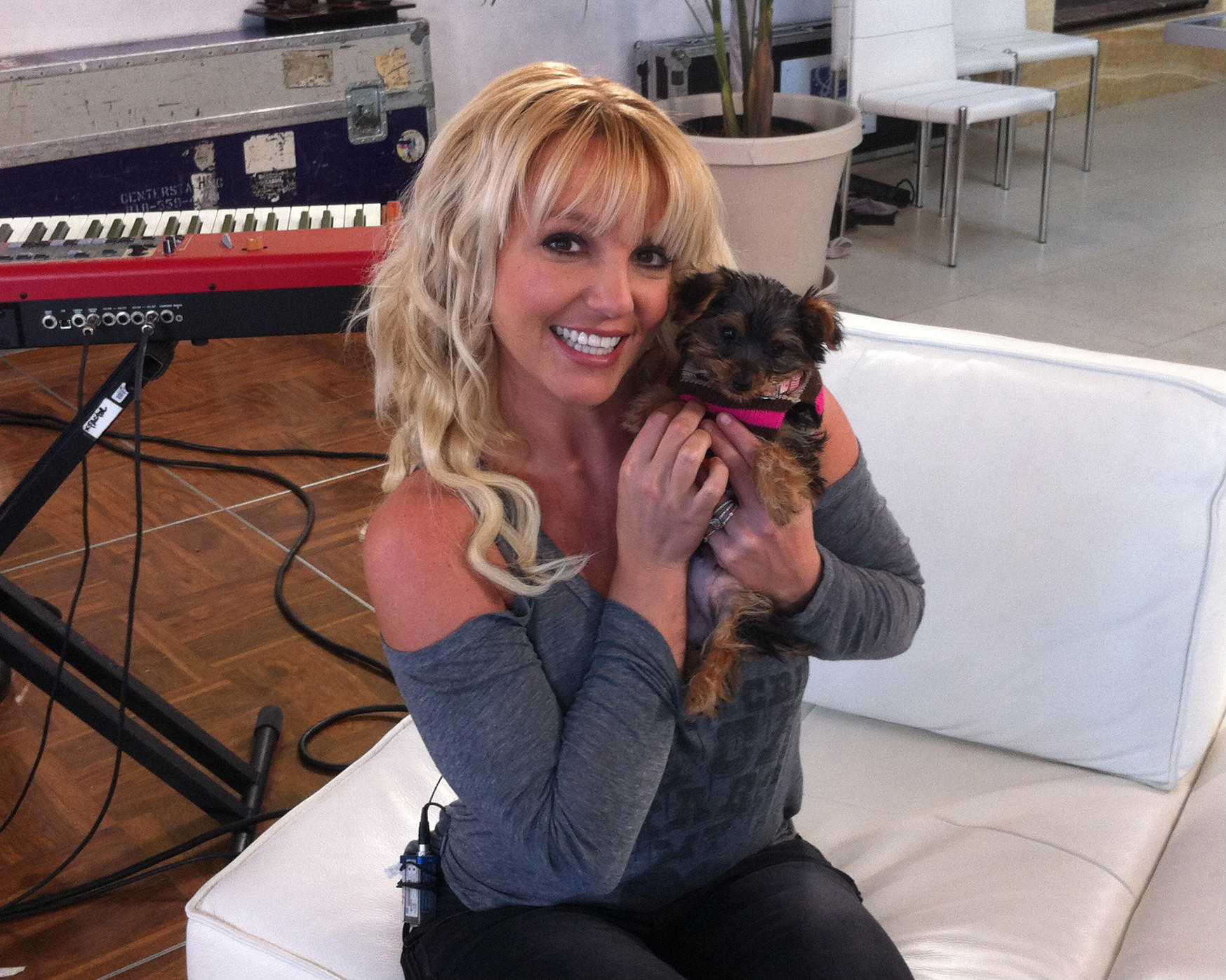 Twitter / britneyspears: I want you all to meet my new ...