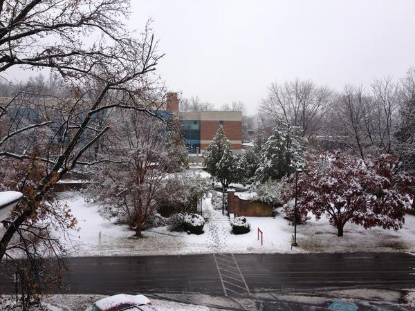 @LansReporter A fresh coat of snow at GMC. Assumption Hall looking out at the Lady Garden. http://pic.twitter.com/HpSHhvXz