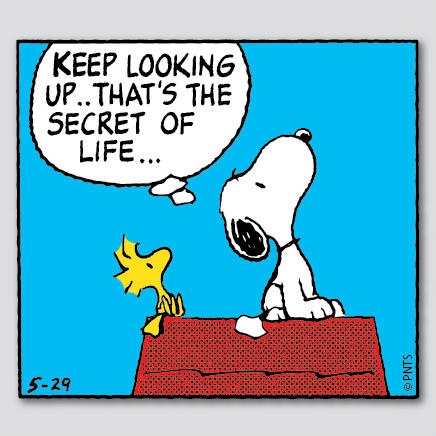 """PEANUTS on Twitter: """"Keep looking up. That's the secret of ..."""