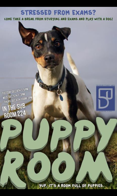 i wish i went to dalhousie #puppyroom #socool http://pic.twitter.com/dhO4boNV