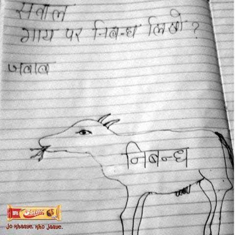 Gurprriet Siingh On Twitter Essay On A Cow In Hindi Enjoy  Gurprriet Siingh