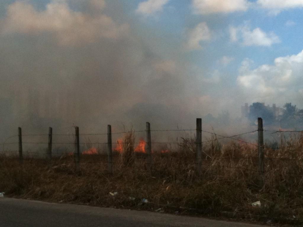 Incêndio em vegetação no Cidade Satéliete próximo à residências