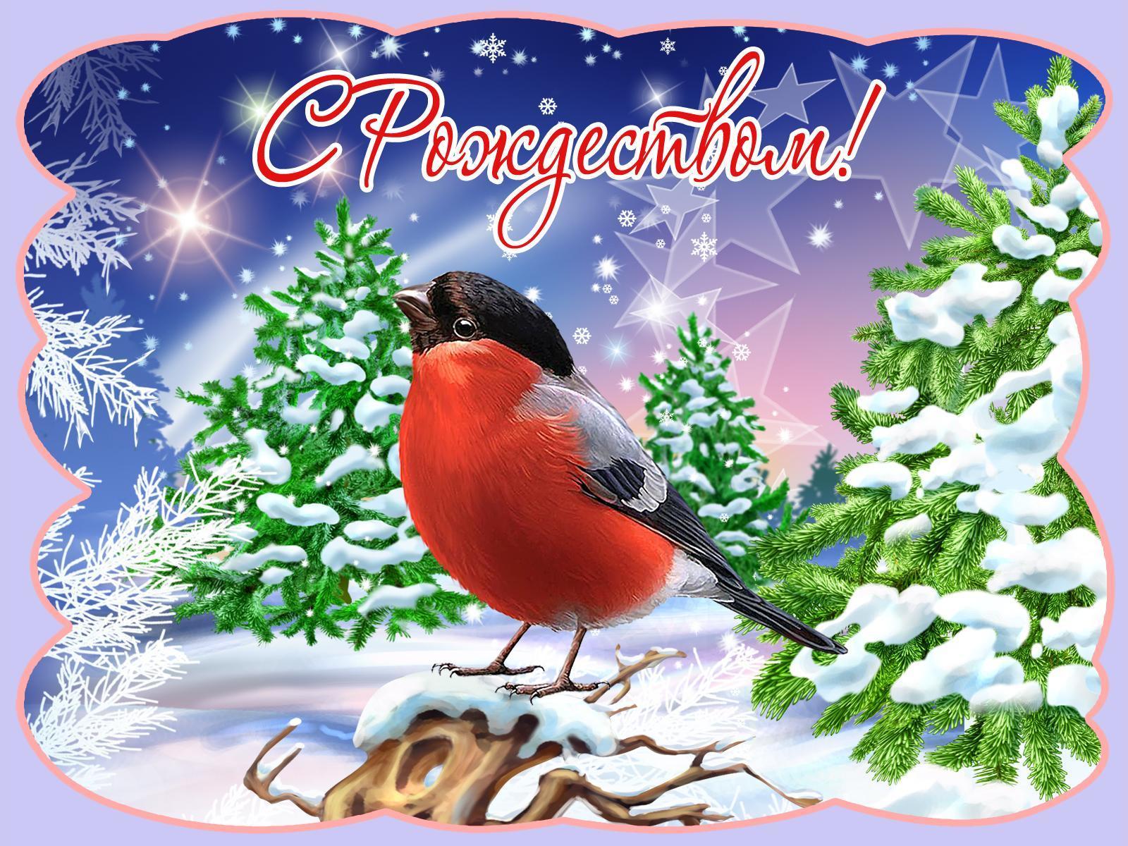 Открытки с пожеланиями на новый год и рождество