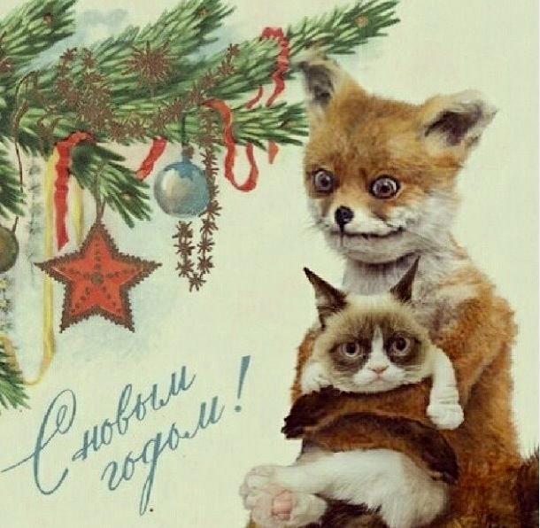 Открытка с лисой на новый год, днем рождения картинки