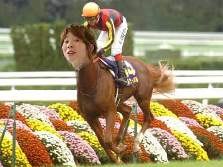 川越シェフがオルフェーヴルになって有馬記念を勝った画像ください