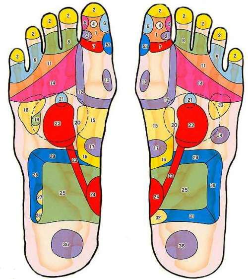 ツボ 足 親指 足つぼを押して痛いところでわかる不調と効果的な足つぼマッサージ