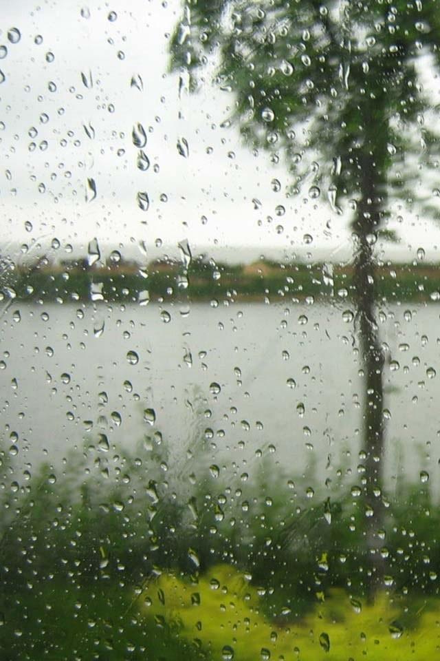 дождь это движущиеся картинки чего начать