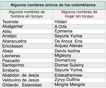 Perras de latino america - 3 5