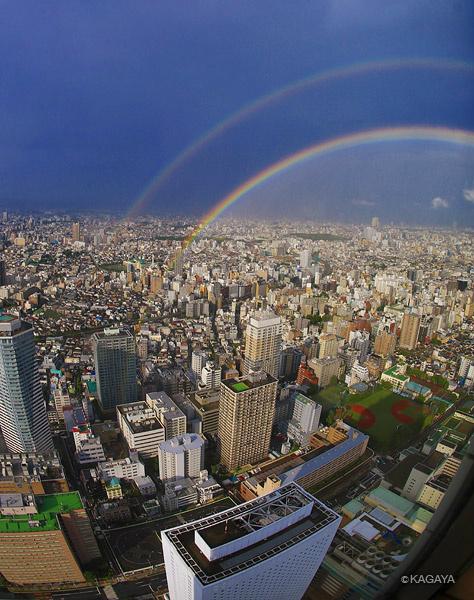 本日東京に出現したダブルレインボー。内側のはっきりしたほうが主虹、外側が副虹。双方は色の順序が逆になっています。主虹のたもとはビルの手前になっています。