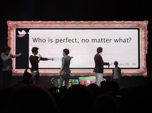 THE BEST ONE DIRECTION TOUR PHOTO! RT if you agree! http://t.co/rlDIis1P
