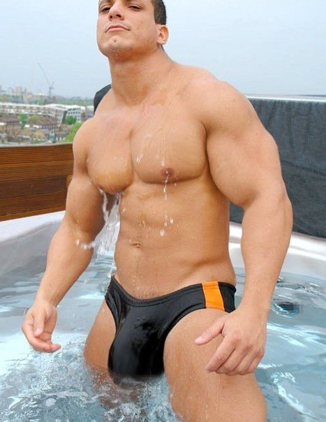 image Twinks bulging swim suits gay porn seth