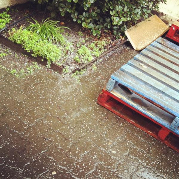 hailing in #Portland ! Freezing http://t.co/P4sQKSlp
