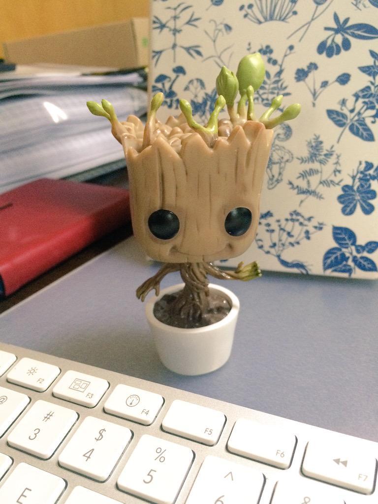还记得《银河护卫队》里的小树人么~(≧∇≦)谢谢条子@fhwick 的海淘~叩恩! http://t.co/pdB7kKmI7B