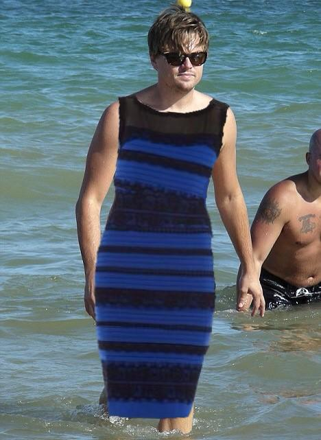 The dress color twitter