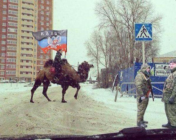 Дипломатия без оружия до сих пор не достигла никаких успехов. Запад должен немедленно вооружить армию Украины, - немецкий евродепутат - Цензор.НЕТ 3904