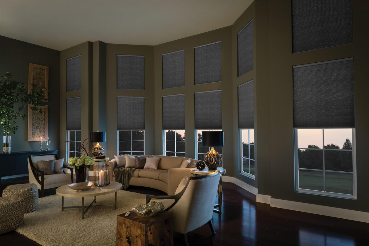 coverings roman we home blinds inspiring window types budget omaha carry of all alexandriaproperty shades wonderful