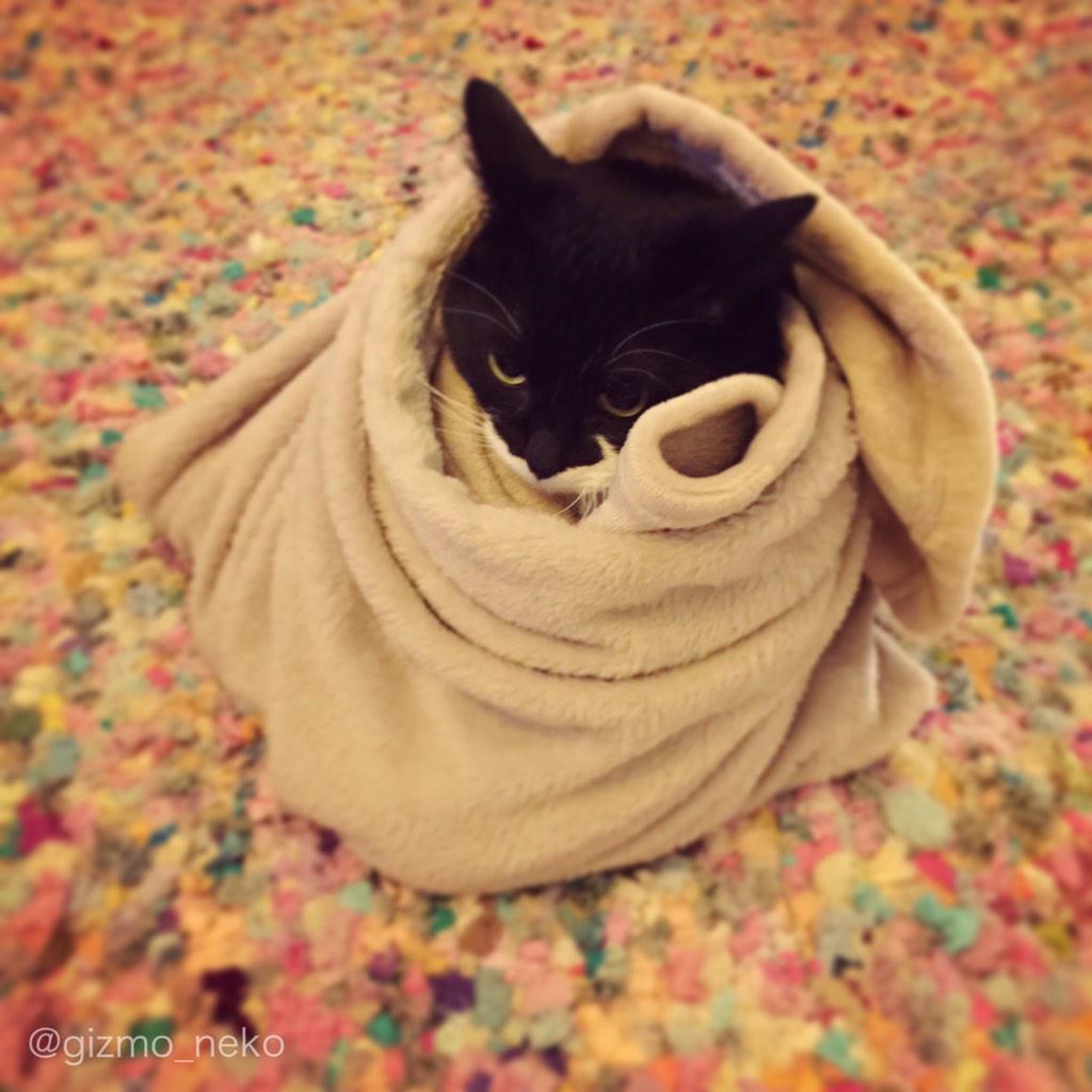 私の名は毛布マン。オネムの時に現れるのだ…。 pic.twitter.com/Bv68hnw9OU