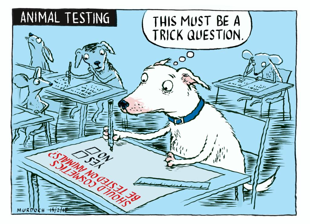 we should stop animal experimentation What you can do to stop animal testing  about the physicians committee's work to reform toxicity testing we'll keep you in the loop on our challenges and.
