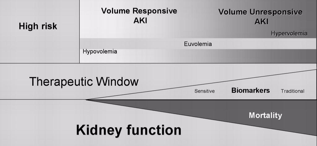 T3: this is one path from Himmelfarb et al in @CJASN http://t.co/8ZQeUWCllK #Nephjc http://t.co/FA64hWk4ce